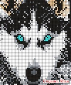 Fantastic Absolutely Free knitting charts wolf Concepts 68 Ideas for knitting charts wolf Knitting Charts, Knitting Patterns, Crochet Patterns, Beginner Knitting, Free Knitting, Crochet Cross, Crochet Chart, C2c Crochet, Bead Loom Patterns