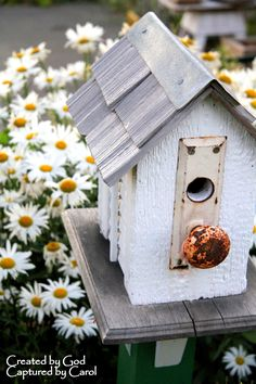This home will make some bird very happy.