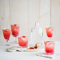 Blood Orange Gin and Tonic Cocktail Drink Recipe