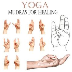 Healing mudras are very easy to perform on any time. Here are the 7 best hand yoga mudras for healing health with performance steps and transformation techniques. Yoga Quotidien, Daily Yoga Routine, Lotus Pose Yoga, Gyan Mudra, Hand Mudras, Relaxation Exercises, Stretches, Night Yoga, Yoga Themes