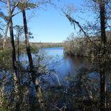 Black creek ravine trail (Middleburg) 2.3 miles