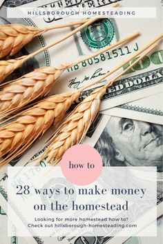 28 ways to make your homestead work for you. How to make money from your homestead.   Hillsborough Homesteading