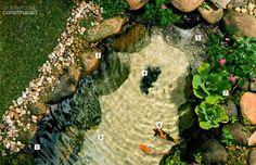 08-como-fazer-uma-piscina-natural