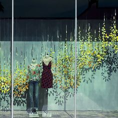 Our Fall 2014 Windows - Anthropologie....beautiful!