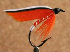 """Trout Fin wet fly, Size #6 - """"Another of several brook trout fin wet fly patterns"""" - Don Bastian"""