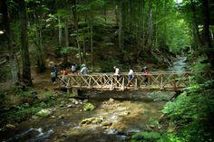 Paikos Mountain, Pella Garden Bridge, Greece, Paradise, The Unit, Outdoor Structures, Mountains, Regional, Nature, Pictures