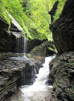 finger lakes, camping, waterfall hikes :)