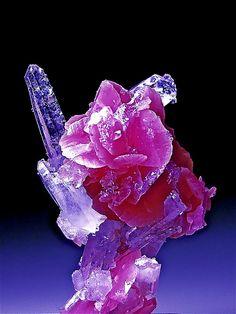 Rhodochrosite and Quartz | Flickr - Photo Sharing!