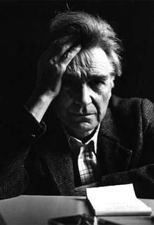 Emil  Cioran- ( 1911 – 1995) was a  great Romanian philosopher and essayist