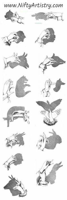 Schattentheater selber machen und die Hände spielen lassen - shadow theatre for your one. Shadow Puppets With Hands, Hand Shadows, Shadow Theatre, Finger Art, Shadow Art, Shadow Play, Human Shadow, Shadow Tattoo, Useful Life Hacks