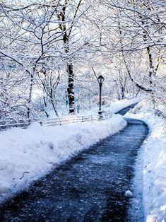 Winter Szenen, Winter Love, Winter Magic, Winter Walk, Winter Trees, Winter White, Foto Picture, Snow Scenes, Winter Beauty