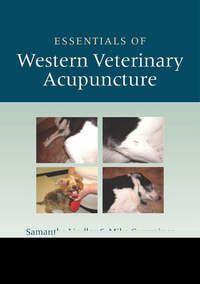 Essentials of Western veterinary acupuncture
