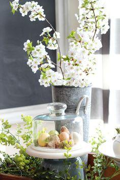 Spring Fresh - Free