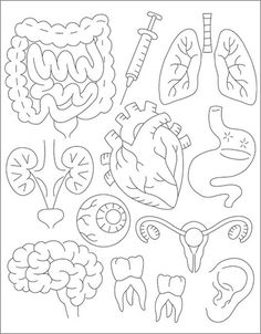 Sublime Stitching Vital Organs Pattern. Embroidery patterns of internal organs.