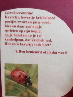 Versje over lieveheersbeestje
