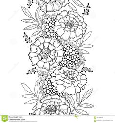 Vector Seamless Pattern With Outline Tagetes Or Marigold Flower Stock Vector - Illustration of coloring, decor: 101188435