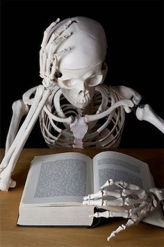 A skeleton reading a book Stock Photo - Premium Royalty-Free, Code: Medical Quotes, Medical Art, Medical School, Rauch Fotografie, Medical Photography, Doctor Quotes, Medical Wallpaper, Skeleton Art, Skeleton Photo
