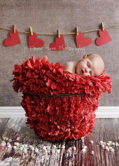 47 Trendy Ideas For Baby Photography Valentines Day Valentine Mini Session, Valentine Picture, Valentines Day Baby, Valentines Day Pictures, Valentine Nails, Valentine Ideas, Photography Mini Sessions, Holiday Photography, Children Photography