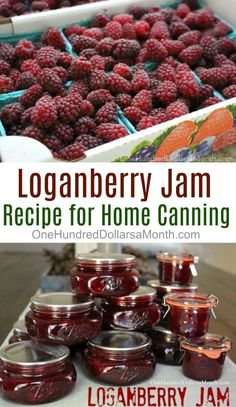 Canning 101, Home Canning, Canning Recipes, Pressure Canning, Kitchen Recipes, Jelly Recipes, Jam Recipes, Budget Recipes, Drink Recipes