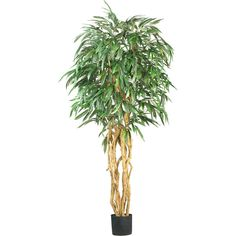Nearly Natural 6' Weeping Ficus Silk Tree ($185) ❤ liked on Polyvore