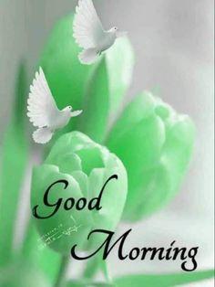 Good Morning Gif, Good Morning Greetings, Good Morning Images, Good Morning Quotes, Love Mom Quotes, Wednesday Wishes, Ganesh Wallpaper, Good Night Image, Beautiful Flowers
