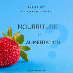 "Do you know how to say ""food"" in French? And what is the difference between ""nourriture"" et ""alimentation""? All the answers in this article."