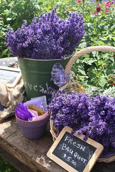Fresh Cut Sequim Lavender by sequimlavenderfestival, via Flickr - find its properties for skincare