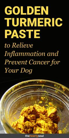 Give Your Dog a Tbsp. of This Golden Turmeric Paste to Relieve Inflammation and Prevent Cancer - My list of simple and healthy recipes Tumeric Paste For Dogs, Turmeric Paste, Natural Cough Remedies, Cold Remedies, Natural Cures, Natural Healing, Natural Oil, Herbal Remedies, Natural Treatments