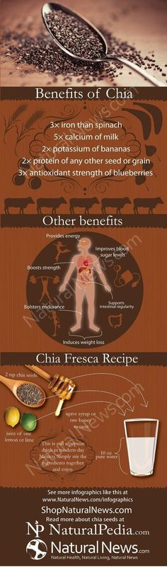 Benefits of Chia- Wow! -I put it a few spoon fuls in my smoothie every day. Blend and drink in about 10 minutes or more, because the Chia seeds will thicken the drink