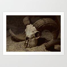 Ram Skull Art Print by Nicholas Smith - $17.68