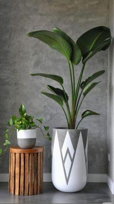 House Plants Decor, Plant Decor, Decoration Plante, Diy Plant Stand, Plant Stands, Concrete Crafts, Deco Floral, Interior Plants, Interior Design