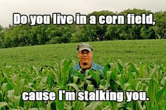 Do you live in a cornfield because i'm stalking you. Funny Pick-up lines Corny Pick Up Lines, Bad Pick Up Lines, Terrible Pick Up Lines, Amazing Pick Up Lines, Redneck Pick Up Lines, Funniest Pick Up Lines, Clean Pick Up Lines, Pick Up Line Memes, Pic Up Lines