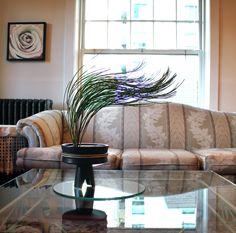 broom cyprus - ikebana | by G J Freeman Ikebana, Cyprus, Curtains, Flowers, Plants, Photos, Home Decor, Blinds, Pictures