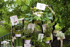 Tableau matrimonio - tema erbe aromatiche