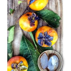 """""""Here in the south (SE Oklahoma is known as """"Little Dixie"""") we like to make our winter prediction based on opening up some persimmon seeds. Traditional lore is that if the seeds are shaped like forks, winter will be mild; if they are shaped like spoons, there will be a lot of snow; and if they are shaped like knives, winter will be bitingly cold.  Each one I opened today was a spoon! #folklore #weather #prediction #persimmon #nature #oklahoma #autumn Photo by @veraviola_vintage on Instagram"""