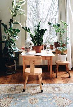 Janela grande com vasos de plantas
