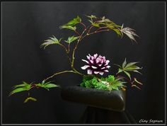 tiny Ikebana of maple leaves