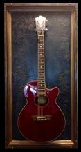 "G Frames ""The Rockwell"" Guitar or Bass Display Case"