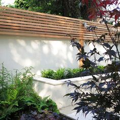 Enchanting Bamboo Garden Fencing Ideas 6 Rewarding Clever Ideas: Lattice Fence Shades concrete f Garden Privacy, Backyard Privacy, Backyard Fences, Garden Fencing, Decking Fence, Wall Trellis, Trellis Fence, Lattice Fence, Wire Fence