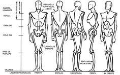 Es el usado por los profesionales, en el se intuyen la colocación de huesos clave como el cráneo, clavícula, caja torácica, hueso de la cadera, columna, ...