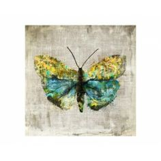 Blue and Lime Green, Butterfly Artwork, Wall Art, Canvas Artwork | Silver Nest