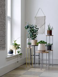 Blend two ongoing trends, botany and pedestals in various heights, and get the ultimate cornerdisplay. Design by Bloomingville #bloomingville #happychanges #aw17 #nordic #design #autumntrends #botany #pedestals #cornerdisplay#hallway #homedecor #interiordesign #interior #bloomingvillehappydays #sharetellchange