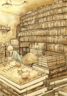 O cão que comeu o livro...: Ratos na biblioteca / Mouses in the library