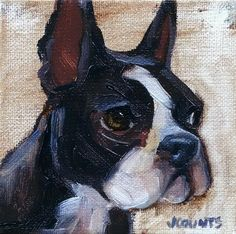 "KYLE BUCKLAND JENN COUNTS FARM ART BOSTON TERRIER DOG ANIMAL OIL PAINTING A DAY Impressionism DOG PORTRAIT BOSTON TERRIER CUTE ANIMAL FINE ART WALL ART HOME OFFICE DECOR TINY PAINTING GREAT GIFT IDEA ""Olive"" Oil on Canvas 4""x4"""