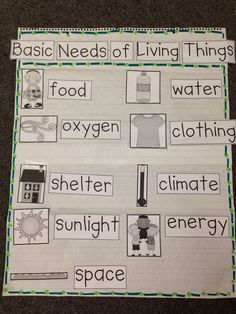 This could be used as a large group activity where the students would follow my directions in cutting out the pictures and making sure the words match the description. Helps explains what living things need in order to survive. -S.G