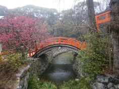 Kyoto Japan earlier this year, an amazing place full of colour and beauty.