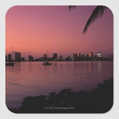 Miami Sunset, Pink Sunset, Miami Skyline, Miami Life, Savannah Chat, Activities For Kids, Beautiful Places, Scenery, Gender