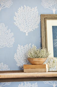 An elegant intricate lace-like coral print with subtle mica highlights. Printed in blue & white. Coastal Wallpaper, Wallpaper Ideas, Port Isaac, Coral Print, Coraline, Coastal Style, House Design, Interior Design, House Styles