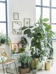 Use old wood stool in garage for planter display inside