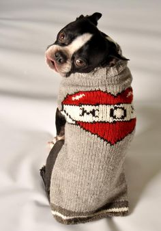 TATTOOED-MOM  Dog Sweater- Eastern Canada french bulldog shop.  Fair Trade, hand knit. support goes to indigenous women's groups in south america.